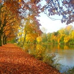 Schwanenteich im goldenen Oktober
