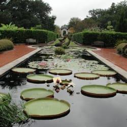 New Orleans Botanical Garden 164 Photos Botanical Gardens City Park New Orleans La