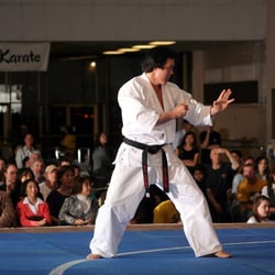 Denver Martial Arts logo