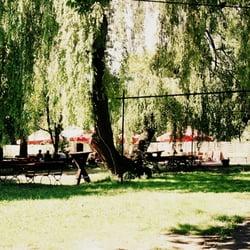 ogródek na tyłach Fonobaru