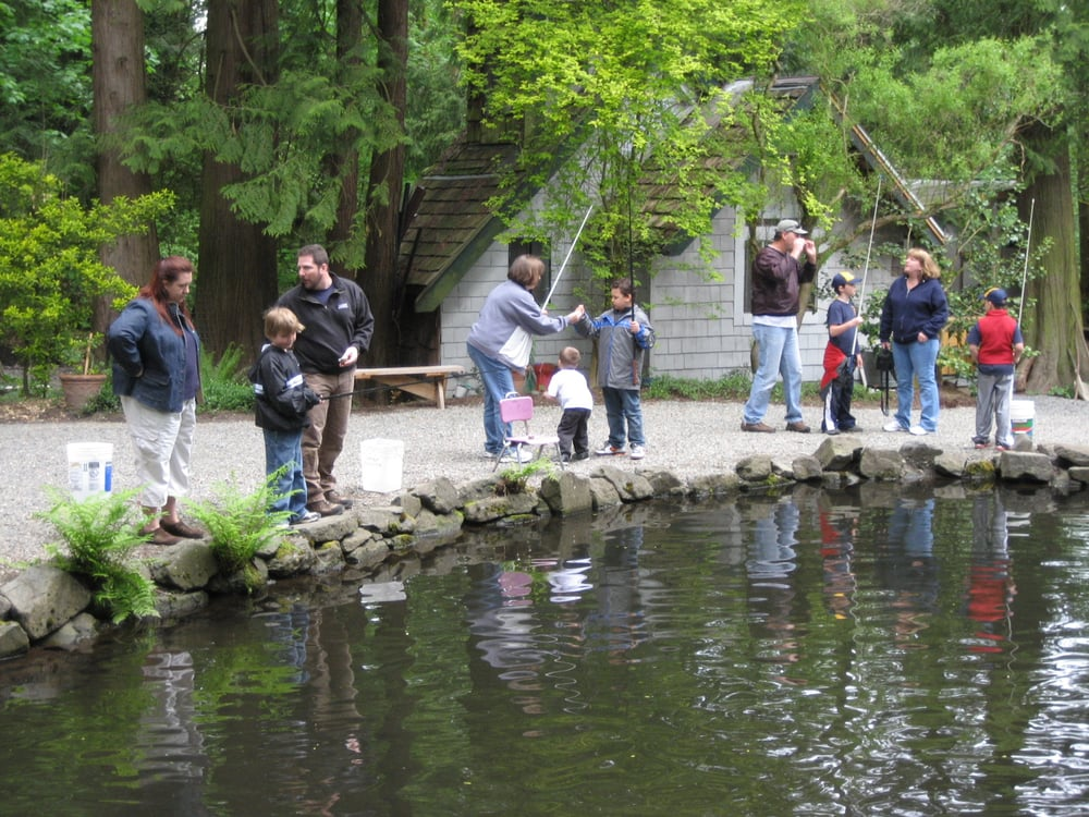 Springbrook trout farm renton wa yelp for Fish farm near me