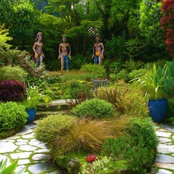 Magic gardens landscaping montclair village oakland for Oakland landscape design