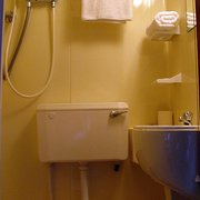 Shower toilet