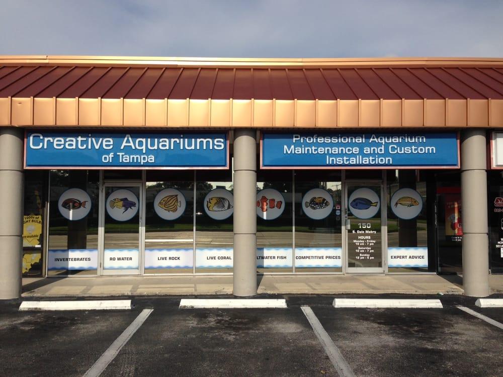 Creative Aquariums Of Tampa Aquarium Services South