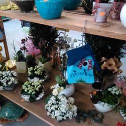 Blumen und Vogelhaus.