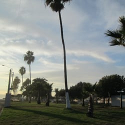 Parque m xico parques y jardines tijuana baja for Florida v jardines