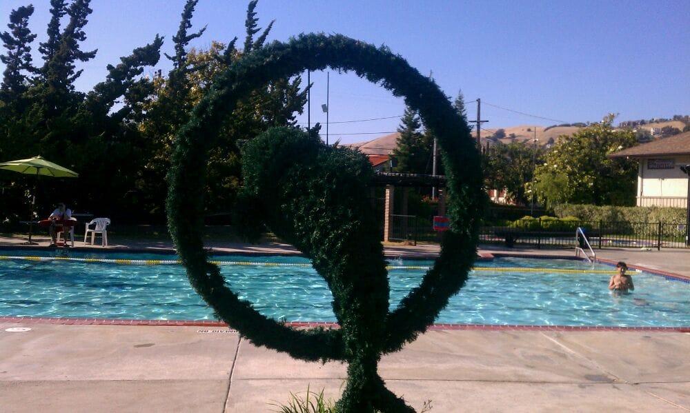 Hayward (CA) United States  city images : ... Swimming Club Swimming Pools Hayward, CA, United States Yelp