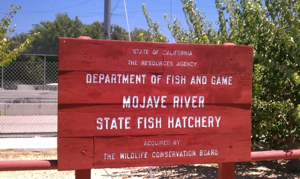 Mojave river state fish hatchery victorville ca united for Fish hatchery near me