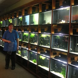 Aquarium store everett wa aquarium services 9661 firdale for Fish stores in ma