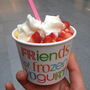 Friends of Frozen Yogurt