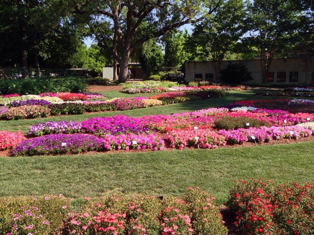 Dallas Arboretum 658 Photos Botanical Gardens Lakewood Dallas Tx Reviews Yelp
