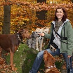 Hundesitter offenbach