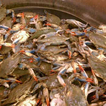 H Mart Crabs H Mart - Annandale  VA