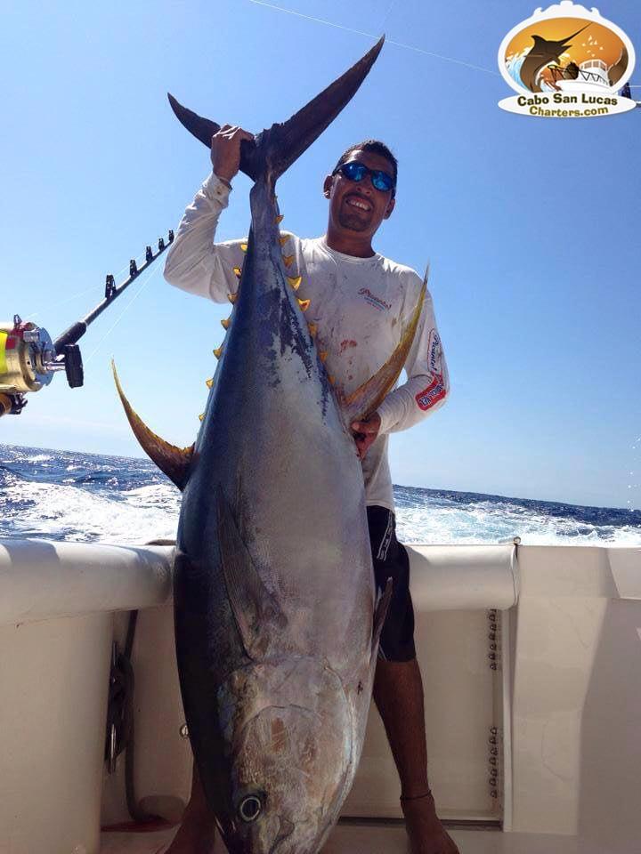 Cabo san lucas sport fishing boat charters cabo san for Tuna fishing california