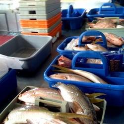 Omar Seafood Seafood Markets Allapattah Miami Fl