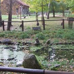 zoologischer garten eberswalde zoo yelp. Black Bedroom Furniture Sets. Home Design Ideas