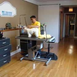 Pet paradise grooming salon pet groomers west lawn for A new you salon springfield il