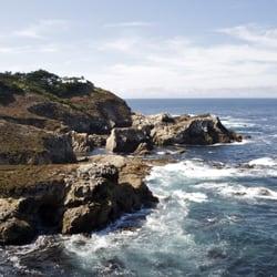 California sea otter game refuge carmel ca yelp for The refuge carmel