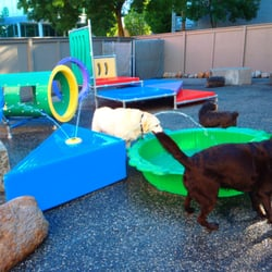 The Doghouse - Our Huge Yard! - Vancouver, BC, Kanada