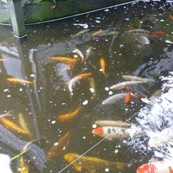 Conwy Water Gardens and Aquatic Centre, Rowen, Conwy