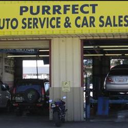 Purrfect auto service and sales autowerkstatt fremont for Fremont motors service department