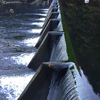 capilano salmon hatchery 71 photos & 23 reviews park