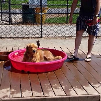 Quiet Waters Park Dog Friendly