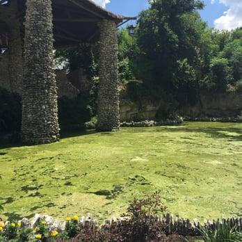 Japanese Tea Gardens 391 Photos 143 Reviews