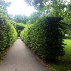 Hecken-Wege im Park