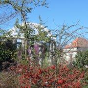 Botanischer Garten München, Munich, Bayern, Germany