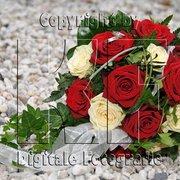 Hochzeitsfotos - mehr Informationen auf…
