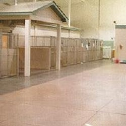 Puget Sound Pet Pavilion - Inside the dog hotel - Tacoma, WA, Vereinigte Staaten