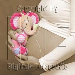 Schwangerschaftsfotografie - mehr…