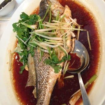 456 shanghai cuisine chinatown new york ny united for 456 shanghai cuisine manhattan ny