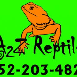 A 2 Z Reptiles A2Z Reptiles - Belleview  FL