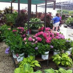 Stein s garden home nurseries gardening brookfield wi reviews photos yelp for Stein s garden home