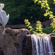 Heimat-Tierpark Olderdissen, Bielefeld, Nordrhein-Westfalen, Germany