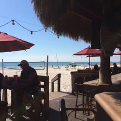 Y Bar Panama City Beach Beach Club - 80 Photos - Seafood - 15201 Front Beach Rd - Panama City ...