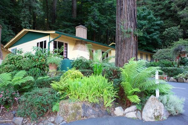 fern grove cottages hotels guerneville ca reviews. Black Bedroom Furniture Sets. Home Design Ideas
