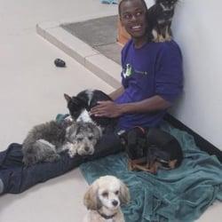 Virginia Woof Dog Daycare - Youth in job training @ Virginia Woof - Portland, OR, Vereinigte Staaten