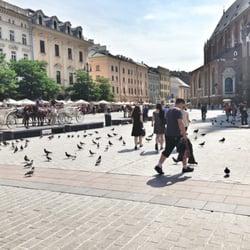feeding pigeons, july 2014