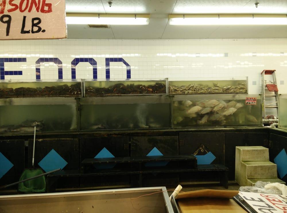 Hong kong food market 97 photos grocery alief for Fresh fish market houston