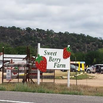 Sweet Berry Farm Active Life Marble Falls Tx