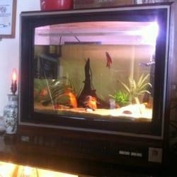 Fish tank tv!