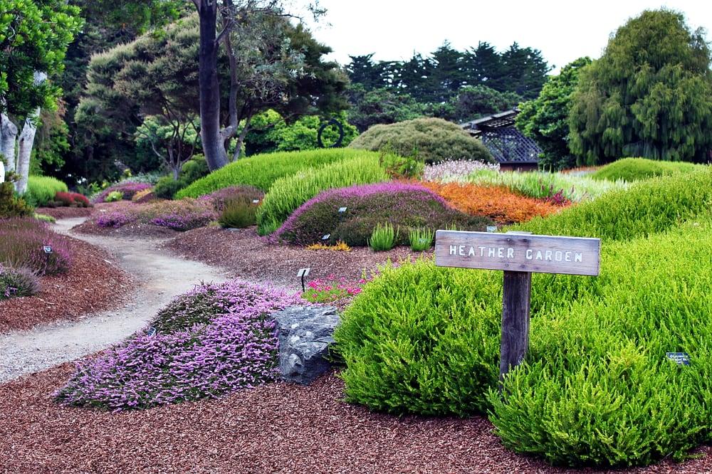 Mendocino Coast Botanical Gardens 203 Photos Botanical Gardens 18220 N Hwy 1 Fort Bragg