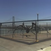 Crouching Spider by Louise Bourgeois - San Francisco, CA, États-Unis. Free the Spider!!!