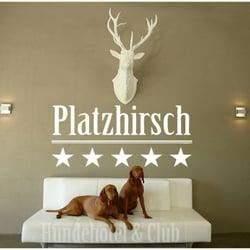 hundehotel platzhirsch tierpension essen nordrhein. Black Bedroom Furniture Sets. Home Design Ideas
