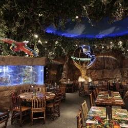 Rainforest Cafe Wa