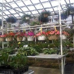 Maria gardens center strongsville oh yelp for Maria s garden center