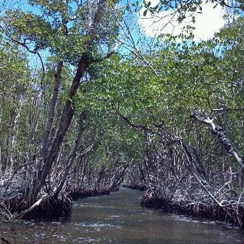 Everglades Island Boat Tours  Dupont St Everglades Fl